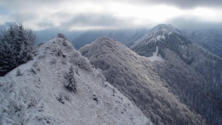 Výhled z vrcholu Baraniarky - pohled na zalesněný vrchol Žitné a vyšší Kraviarske