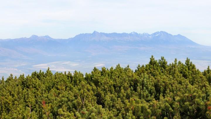 Krakova hola - výhled z vrcholu na Vysoké Tatry