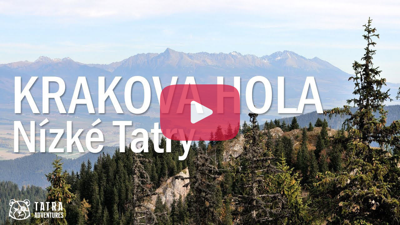 Krakova hola - video