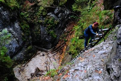 Slovenský ráj je plný vysokých žebříků. Tímto žebříkem se stoupá podél Okienkového vodopádu v roklině Suchá Belá.